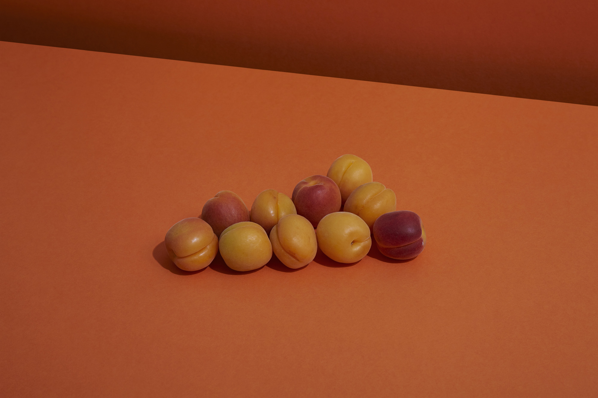 A still life image of fruit on a coloured background